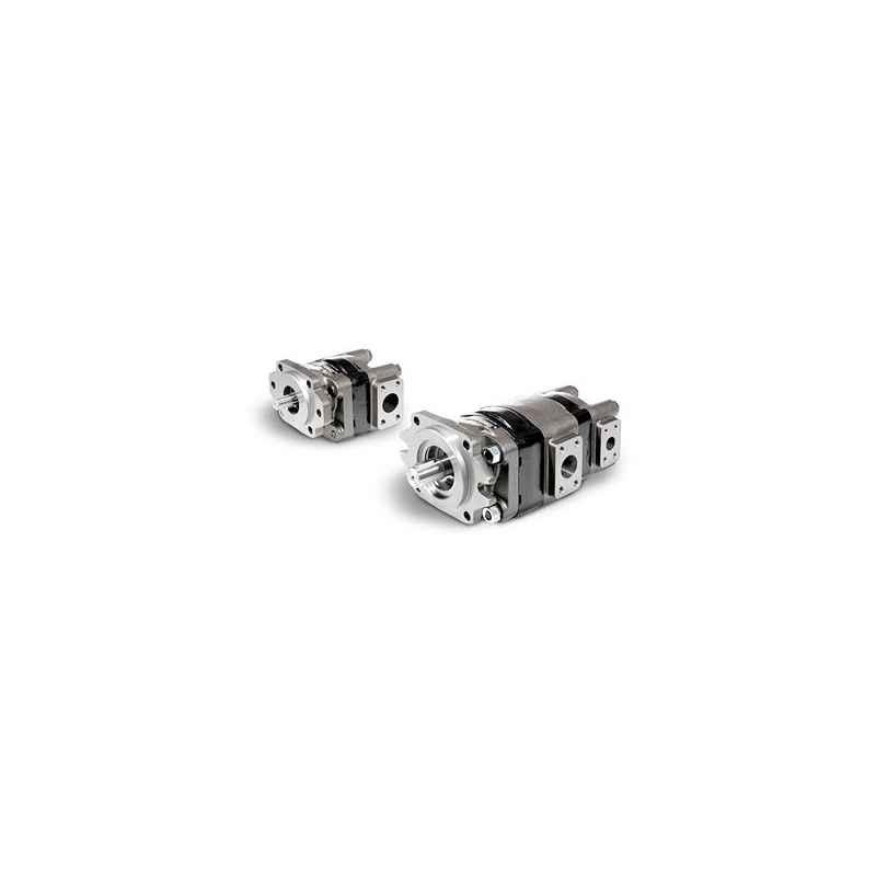 Motoréducteur modulaire série 30 Magnum pour usage intensif (fonte)